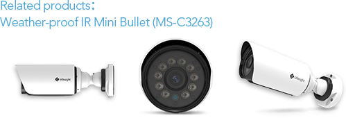 weather-proof IR mini bullet camera, bullet camera, mini bullet camera