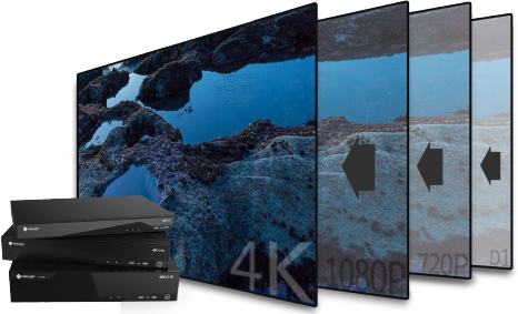 4K video viewing experience of Milesight NVR